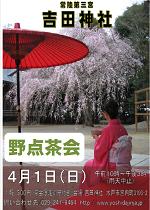 『観桜野点茶会』のお知らせ