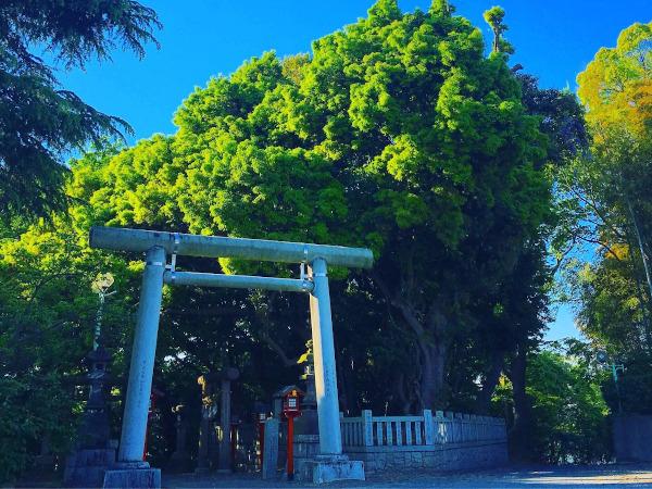 常陸第三宮吉田神社奉賛会