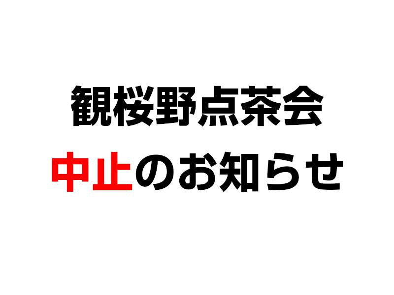 観桜野点茶会中止のお知らせ